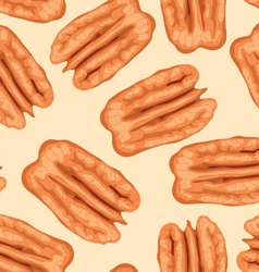 pecan nuts seamless background vector image