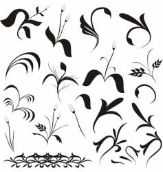 floral shapes vector image vector image