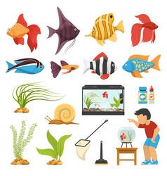 Aquaristics aquarium fish set vector