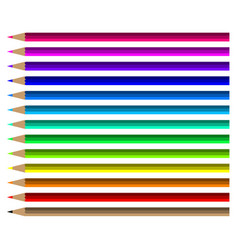 colorful pencil set vector image