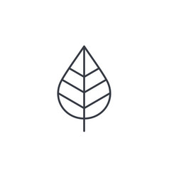 Leaf green eco thin line icon linear vector