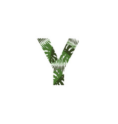 logo letter y tropical leaves vector image