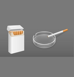 Open pack cigarettes and ashtray vector