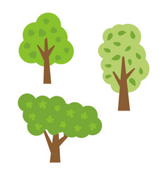 three green trees with leaves vector image