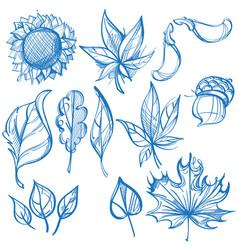 big outline set of leaves labels for design vector image