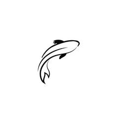 carp koi design on white background animal fish vector image