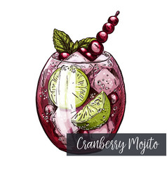 cranberry mojito with lime and berries vector image