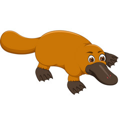 Cute platypus cartoon crawl with smile vector