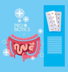 Digestive system with probiotics medicines vector