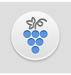 Grapes icon Fruit vector image