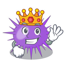 King sea urchin isolated on a character vector