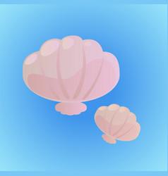 little seashells vector image