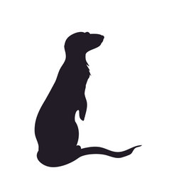 Silhouette of a meerkat vector