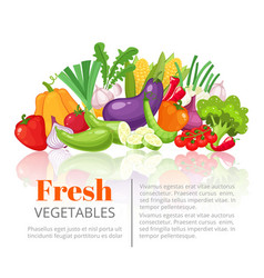 Vegetables posterscientific article heading or vector