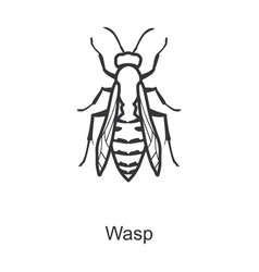 Wasp iconline icon isolated vector