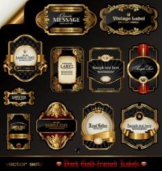 Black and golden labels vector