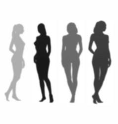 beautiful womans shadows mini set vector image