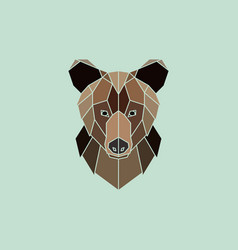 Brown bear portrait vector