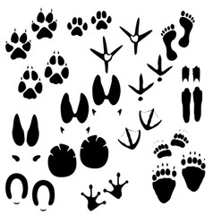 Collection animals birds and man trace vector