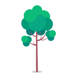 Flat icon tall tree isolated on white vector