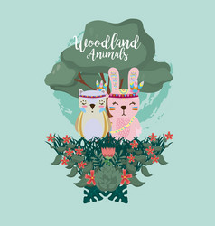 rabbit and owl woodland animals vector image