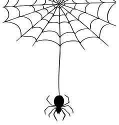 Spider Web 2 vector