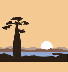 sunset or sunrise in africa baobab and lake vector image