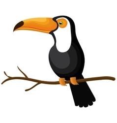 toucan bird isolated icon vector image