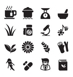 herb icon set vector image vector image