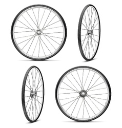 Bicycle Wheels vector image vector image