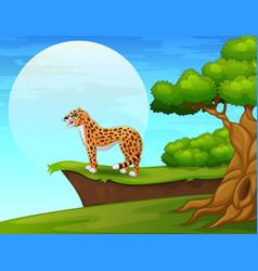 Cartoon cheetah near cliff vector