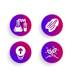 Chemistry lab pecan nut and swipe up icons set vector