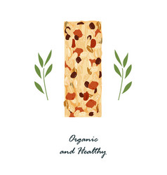 granola bar isolated on white healthy snack with vector image