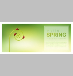 Hello spring background with red ladybugs 3 vector image