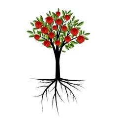 Pomegranate decorative tree vector image