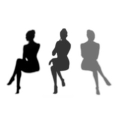 seated womans shadow mini set vector image