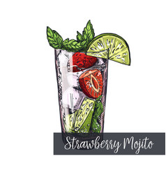 Strawberry mojito cocktail vector