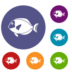 Surgeon fish icons set vector