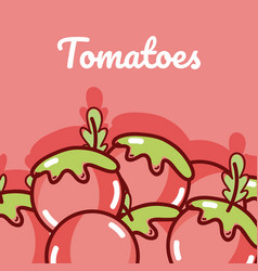 Tomatoes natural vegetables vector