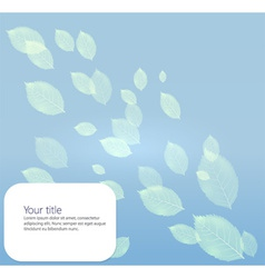 Background with transparents leaves vector image