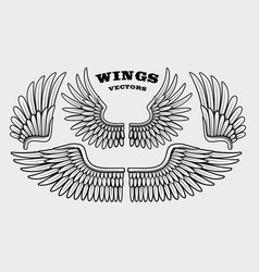 a set different black and white wings vector image