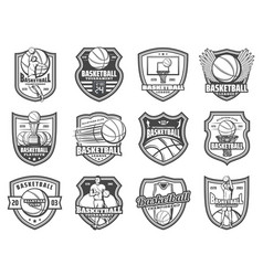 Basketball sport ball and player shield badges vector