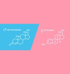 estrogen and testosterone hormones symbol sex vector image