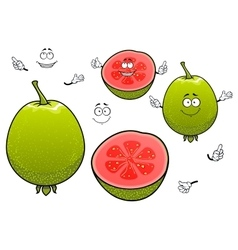 Mexican tropical cartoon guava fruits characters vector