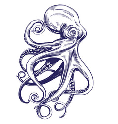 octopus sea life hand drawn vector image