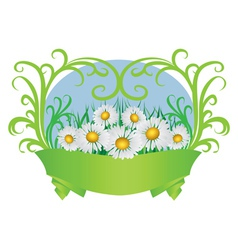 Daisies and ribbon vector image vector image