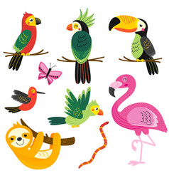set of isolated with tropical animals vector image
