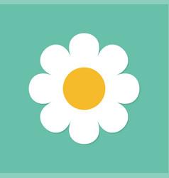camomile icon white daisy chamomile cute round vector image
