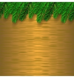 Fir Green Branch vector image