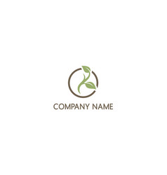 Green leaf plant nature organic company logo vector